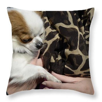 Dog And True Friendship 3 Throw Pillow