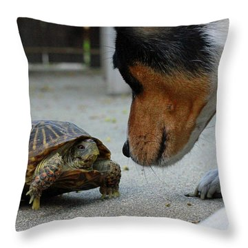 Dog And Turtle Throw Pillow