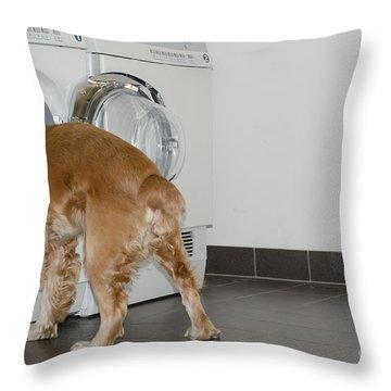 Dog And Washing Machine Throw Pillow by Mats Silvan