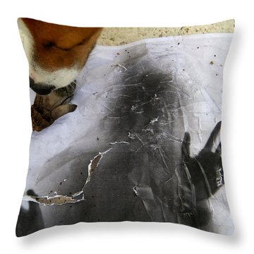 Dog Art Throw Pillow