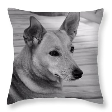 Dog In Black And White One Throw Pillow