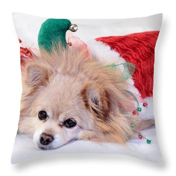 Dog In Christmas Costume Throw Pillow by Charline Xia