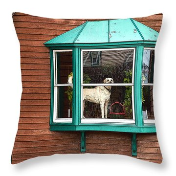 Dog In Window Throw Pillow