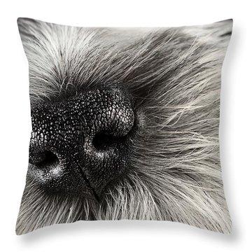 Dog Nose  Throw Pillow