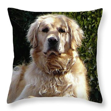 Dog On Guard Throw Pillow
