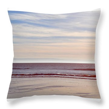Dog On The Beach Throw Pillow