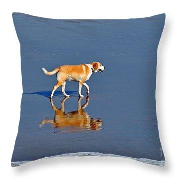 Dog On Water Mirror Throw Pillow