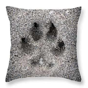 Dog Paw Print In Sand Throw Pillow by Elena Elisseeva