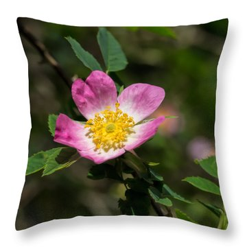 Throw Pillow featuring the photograph Dog-rose by Leif Sohlman