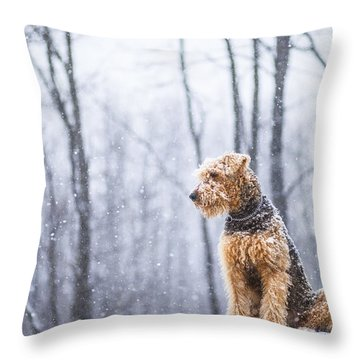 Dog Sits Under The Snowfall Throw Pillow
