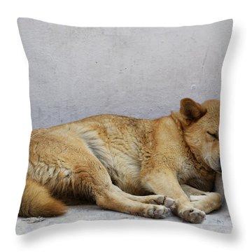 Dog Sleeping Throw Pillow