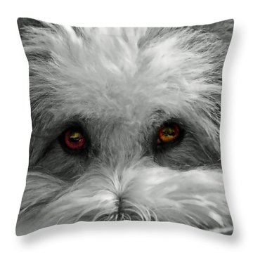Coton Eyes Throw Pillow by Keith Armstrong