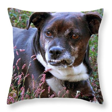 Dogg Throw Pillow