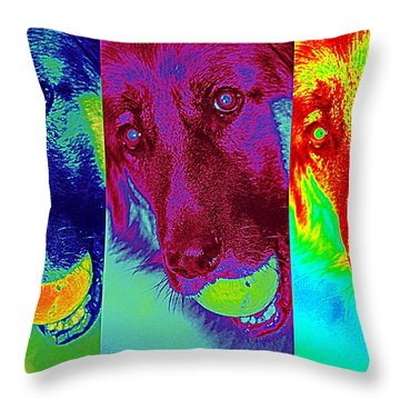 Doggy Doggy Doggy Throw Pillow