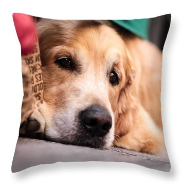 Throw Pillow featuring the photograph Dog's Sorrow by Stwayne Keubrick