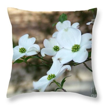 Dogwood 2 Throw Pillow by Andrea Anderegg