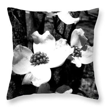 Dogwood 3 Throw Pillow