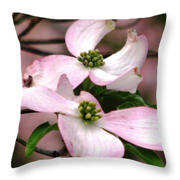 Dogwood A Gift Of Spring Throw Pillow