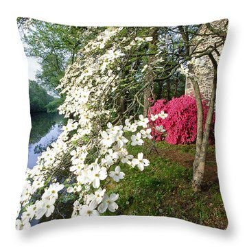 Delaware State Park Throw Pillows