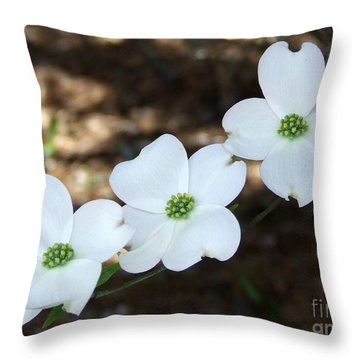 Dogwood Throw Pillow by Andrea Anderegg