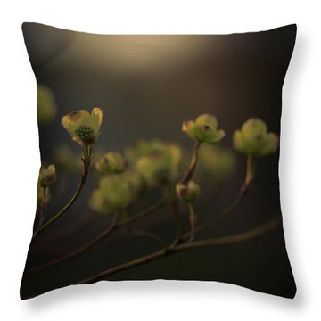 Dogwood At Dusk Throw Pillow