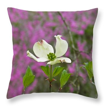 Dogwood Bloom Against A Redbud Throw Pillow by Nick Kirby