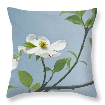 Dogwood Blossoms Throw Pillow by Kim Hojnacki