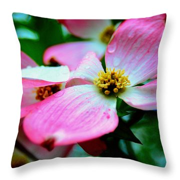 Dogwood Dew Throw Pillow