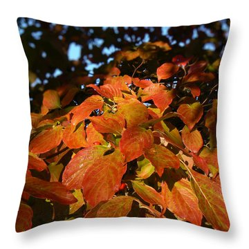 Throw Pillow featuring the photograph Dogwood In Autumn Colors by MM Anderson