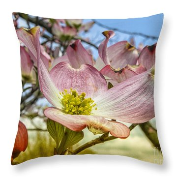 Throw Pillow featuring the photograph Dogwood  by Melissa Messick