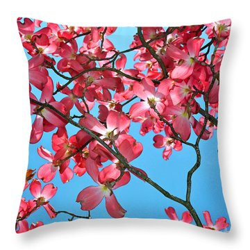 Dogwood Tree Flowers And Blue Sky Throw Pillow