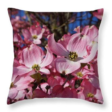 Dogwood Tree Flowers Art Prints Floral Throw Pillow by Baslee Troutman