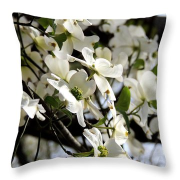 Dogwoods In The Spring Throw Pillow by Kim Pate