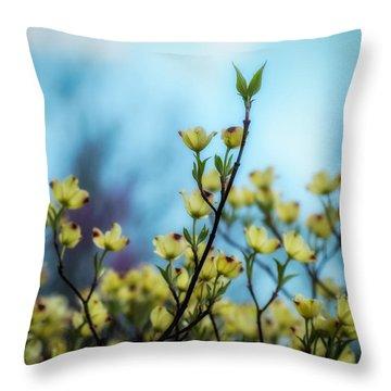 Dogwoods On Blue Sky Throw Pillow