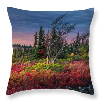 Dolly Sods Windswept Sunset Throw Pillow by Mary Almond