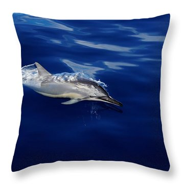 Dolphin Breaking Free Throw Pillow by John  Greaves