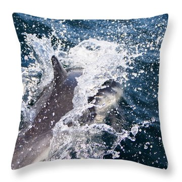 Dolphin Splash Throw Pillow