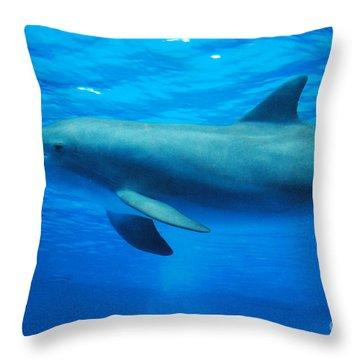 Dolphin Underwater Throw Pillow by DejaVu Designs