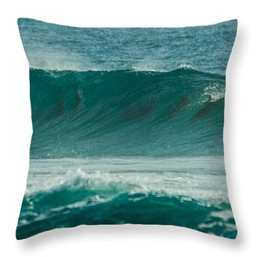 Dolphins In Wave 10 Throw Pillow