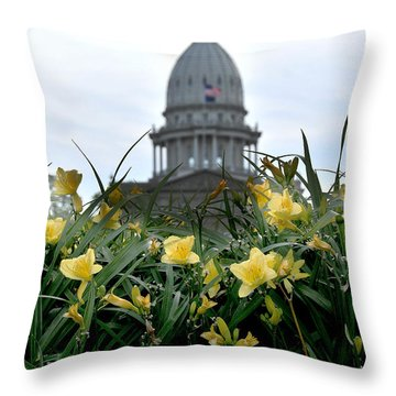 Dome Through The Daffodils Throw Pillow