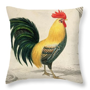 Domestic Cock Throw Pillow by Edouard Travies
