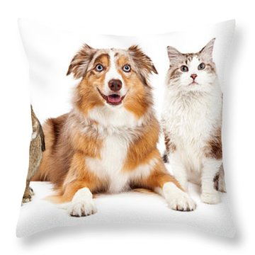 Domestic Pet Composite Throw Pillow