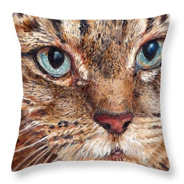 Domestic Tabby Cat Throw Pillow