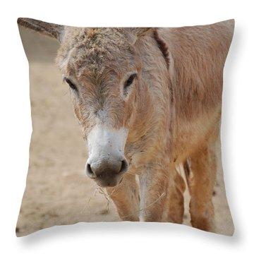 Donkey Throw Pillow by DejaVu Designs