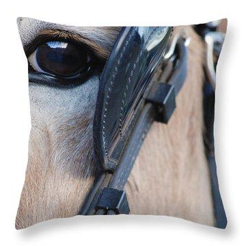Donkey Eye Throw Pillow