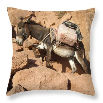 Donkey Of Mt. Sinai Throw Pillow