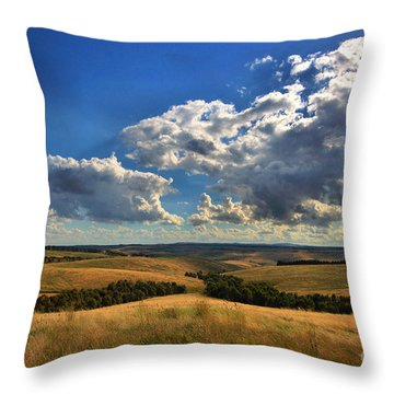 Donny Brook Hills Throw Pillow