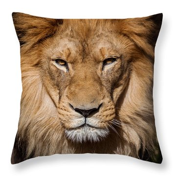 Don't Ask Throw Pillow by Steven Reed