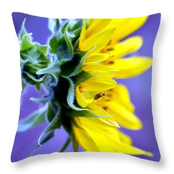 Don't Bug Me Throw Pillow