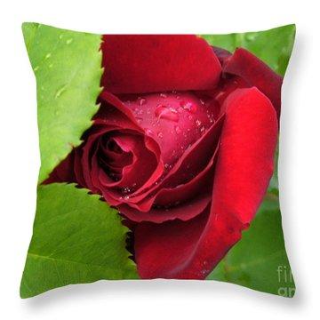 Don't Cry For Me Rosanna Throw Pillow by Lingfai Leung